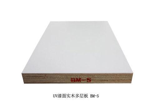 嘉德林橱柜-橱柜门板-UV漆面实木多层板 BM-5