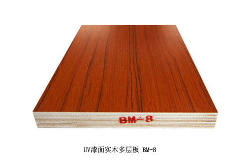 嘉德林橱柜-橱柜门板-UV漆面多层板 BM-8