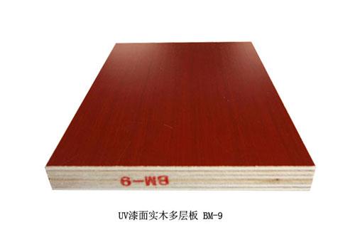 嘉德林橱柜-橱柜门板-UV漆面实木多层板 BM-9