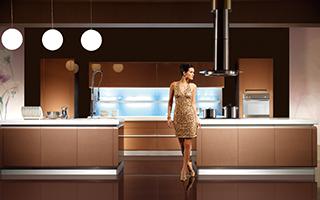 金牌厨柜-整体橱柜-西曼2
