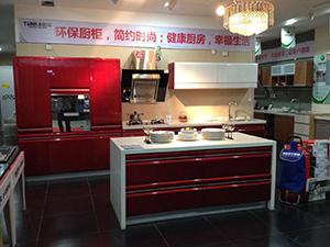 TENKA腾嘉厨柜-烤漆系列